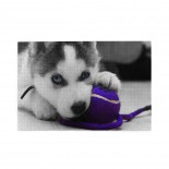 Pup Playing With Purple Ball puzzle, 1000 Piece Wooden Fun Jigsaw,Apply toKids as Birthday 75cm X 50cm