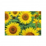 Yellow Sunflowers puzzle, 1000 Piece Wooden Fun Jigsaw,Apply to Graduation Gift 75cm X 50cm