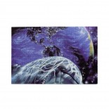 Dolphin Cosmological Earth puzzle, 1000 Piece Wooden Fun Jigsaw,Apply toFamily 75cm X 50cm