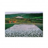 Harald Sohlberg Flower Meadow In The North puzzle, 1000 Piece Wooden Fun Jigsaw,Apply toAnniversary 75cm X 50cm