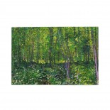 Vincent Van Gogh Trees And Undergrowth (4) puzzle, 1000 Piece Wooden Fun Jigsaw,Apply to Graduation Gift 75cm X 50cm